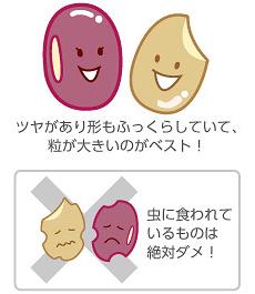 小豆と玄米の選び方