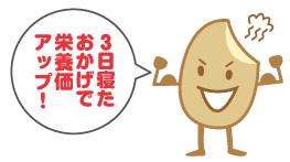 3日保温で玄米の栄養価アップ