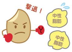 発芽玄米が中性脂肪を軽減