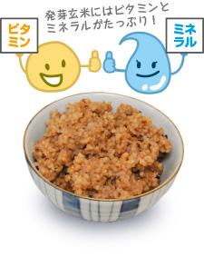 発芽玄米の栄養