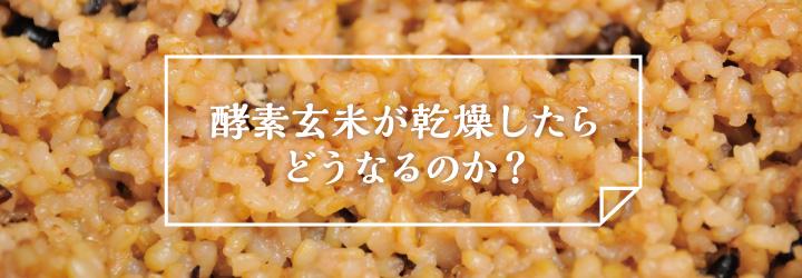 33_kousogenmai_kansou_t2