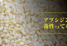 発芽玄米とアブシジン酸の関係